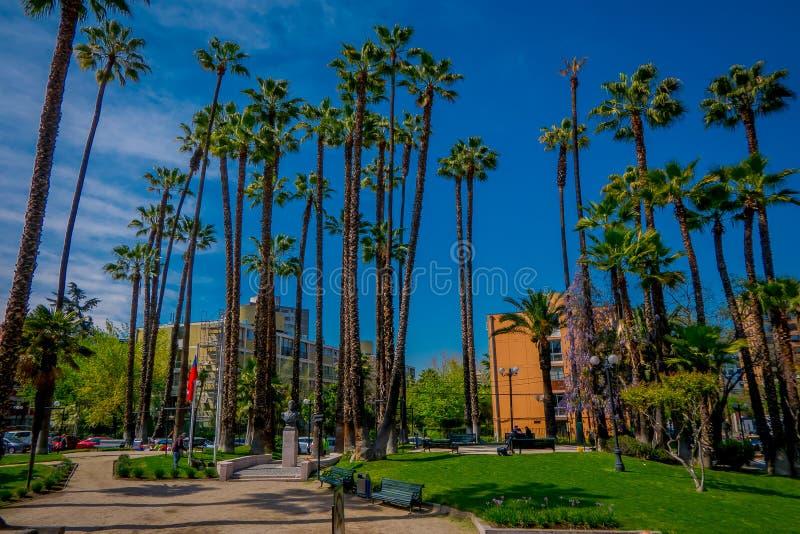 SANTIAGO DE CHILE, CHILE - OKTOBER 16, 2018: Den härliga utomhus- sikten av chilenaren parkerar med några palmträd som lokalisera royaltyfria bilder