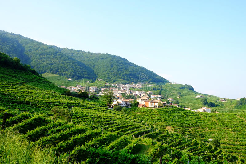 Santo Stefano στην περιοχή prosecco Valdobbiadene στοκ φωτογραφίες