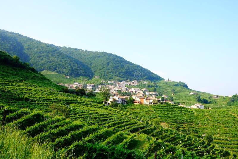 Santo Stefano na região do prosecco de Valdobbiadene fotos de stock