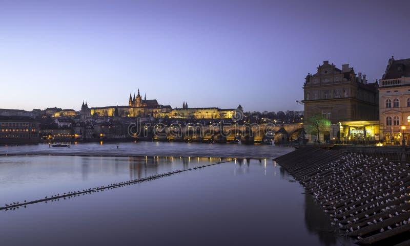 Santo Vitus Cathedral y Charles Bridge de Praga en la noche foto de archivo