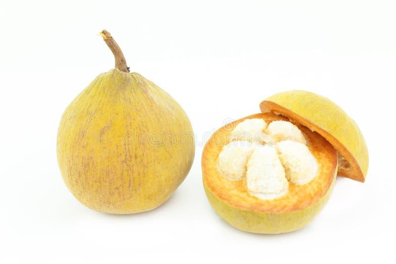 Santol en zaad tropisch fruit op wit royalty-vrije stock foto's