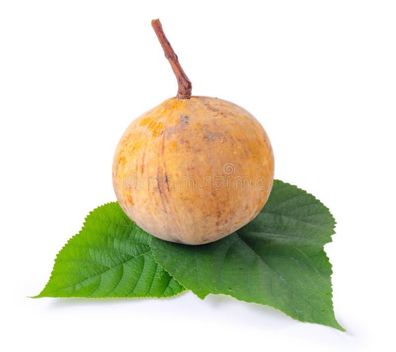 Santol-Frucht lokalisiert auf weißem Hintergrund stockfotos
