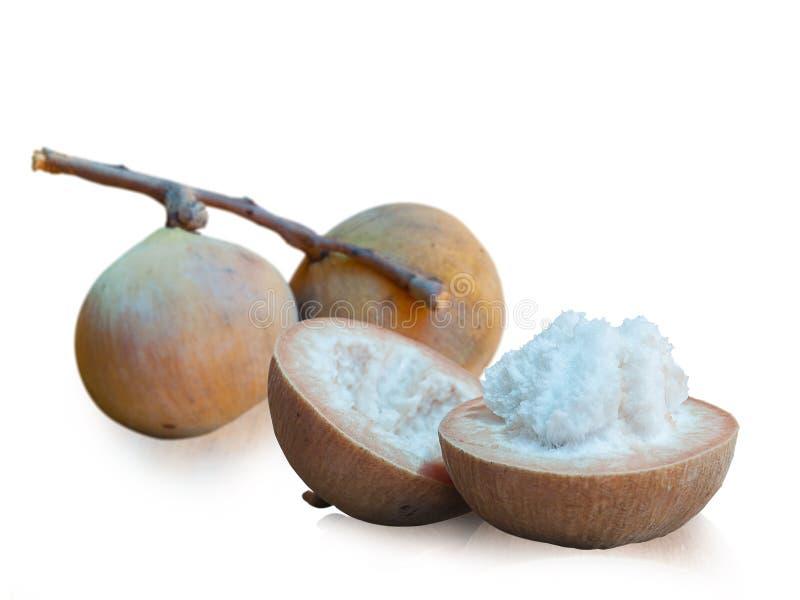 Santol-Frucht lokalisiert auf weißem Hintergrund lizenzfreies stockbild