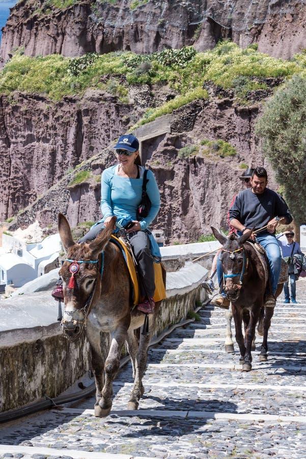 Santorini, Ελλάδα, τον Απρίλιο του 2019 Τουρίστες σε ένα καφετί άλογο ενάντια στο μπλε ουρανό και το νησί Αναρριχηθείτε στα σκαλο στοκ εικόνες