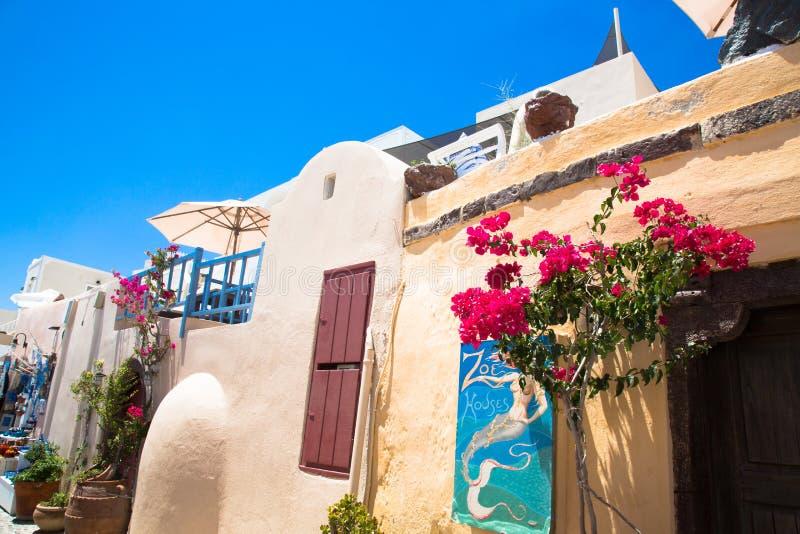 Santorini, Crete, Grecja: stara autentyczna ulica dekorująca kwitnie w wyspie Santorini obrazy stock