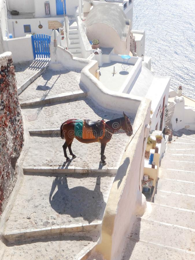Santorini Griechenland stockfoto