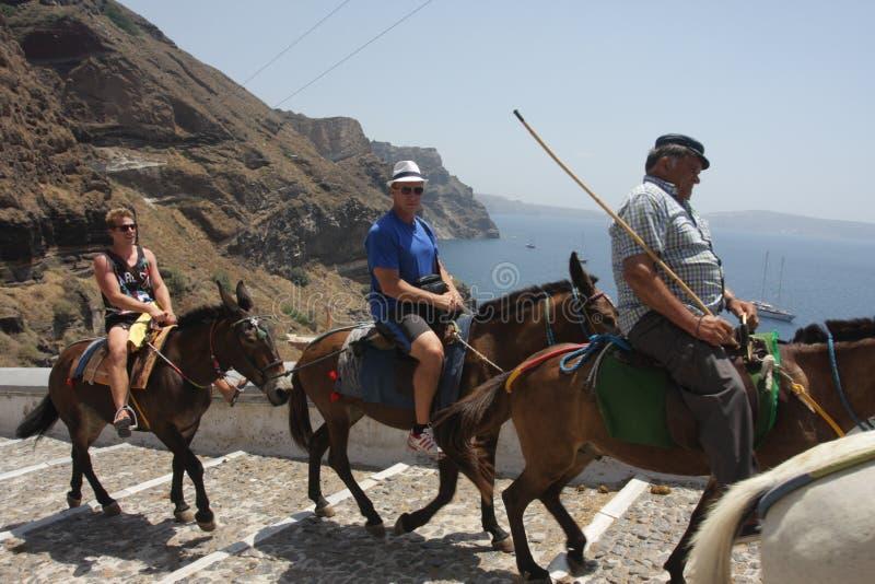 Santorini-Touristen - Eselfahrt stockbilder