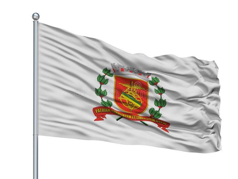 Santos City Flag On Flagpole, el Brasil, aislado en el fondo blanco stock de ilustración