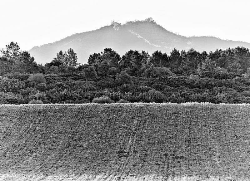 Santuari De salvador sant Felanitx vu de Porreres, matin brumeux avec les arbres et le pré, Majorque, Espagne photo stock