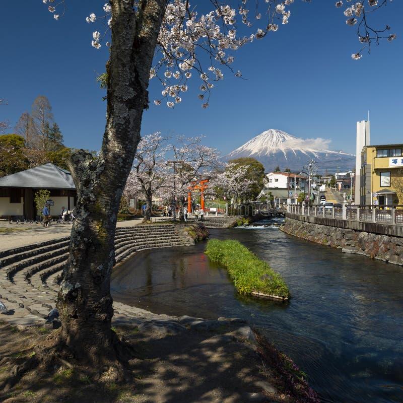 Santuario di Fujisan Honguu Sengen e Cherry Blossom, Shizuoka, Giappone fotografie stock libere da diritti