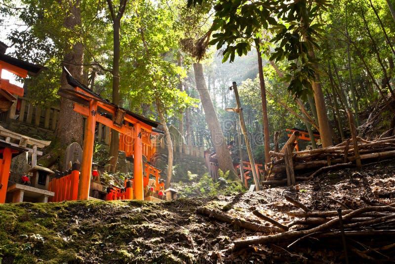 Download Santuario di Fushimi Inari immagine stock. Immagine di spirituality - 30828975