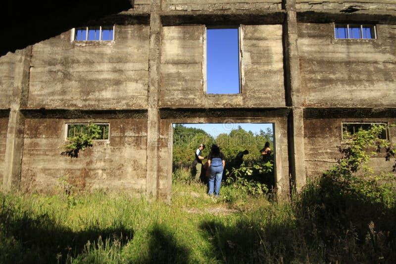 Santuario Naturaleza, Valdivia Suramérica imágenes de archivo libres de regalías
