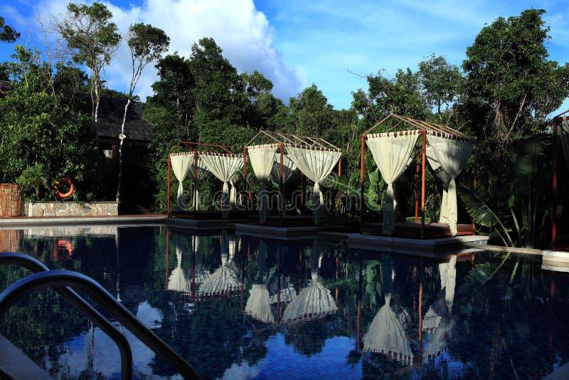 Sanya, le paradis tropical Forest Park photo libre de droits
