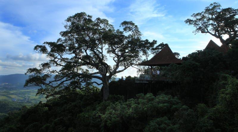 Sanya, le paradis tropical Forest Park photos stock