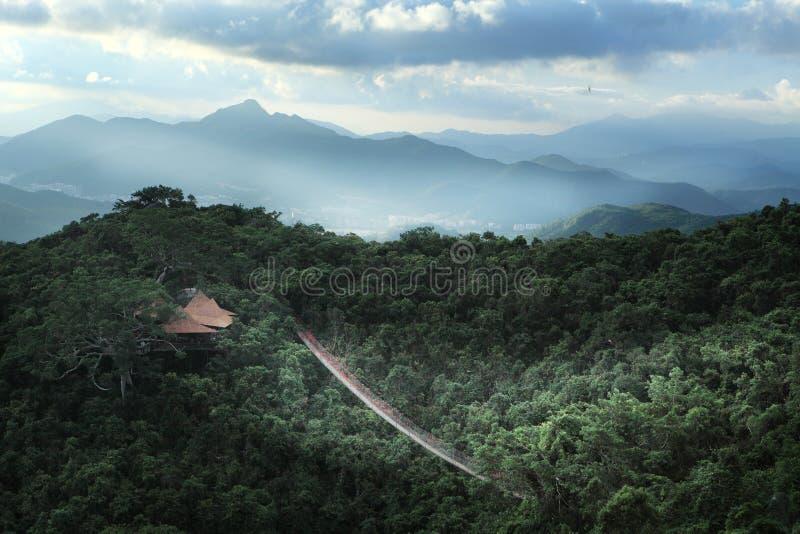 Sanya, le paradis tropical Forest Park photos libres de droits