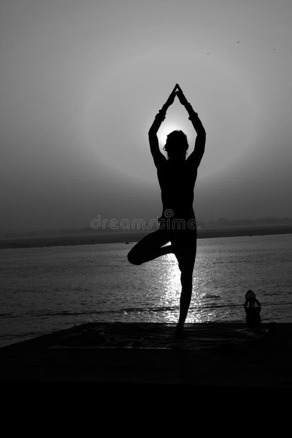Sanyasi (sadhu) zdjęcia stock
