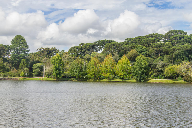 Sao Bernardo lake. Trees around Sao Bernardo lake, Sao Francisco de Paula, Rio Grande do Sul, Brazil royalty free stock photo