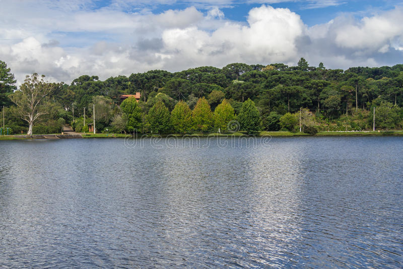 Sao Bernardo lake. Trees around Sao Bernardo lake, Sao Francisco de Paula, Rio Grande do Sul, Brazil royalty free stock photography