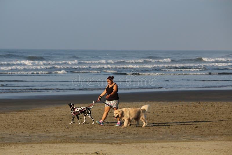 SAO PAULO - Brasilien-April 9, 2016 barnvakt av hundkapplöpning som går på stranden arkivbild