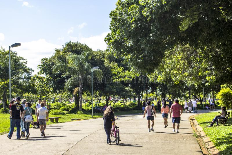 Villa Lobos park. Sao Paulo , Brazil, January 20, 2012, People in Villa Lobos Park. The park is a good place for walkers, cycling and an oasis for the skaters royalty free stock photo