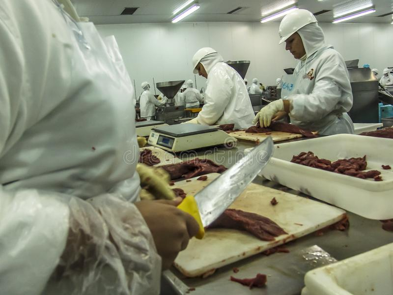 Meat processing in food industry. Sao Paulo, Brazil, March 09, 2006. Meat processing in food industry stock photo