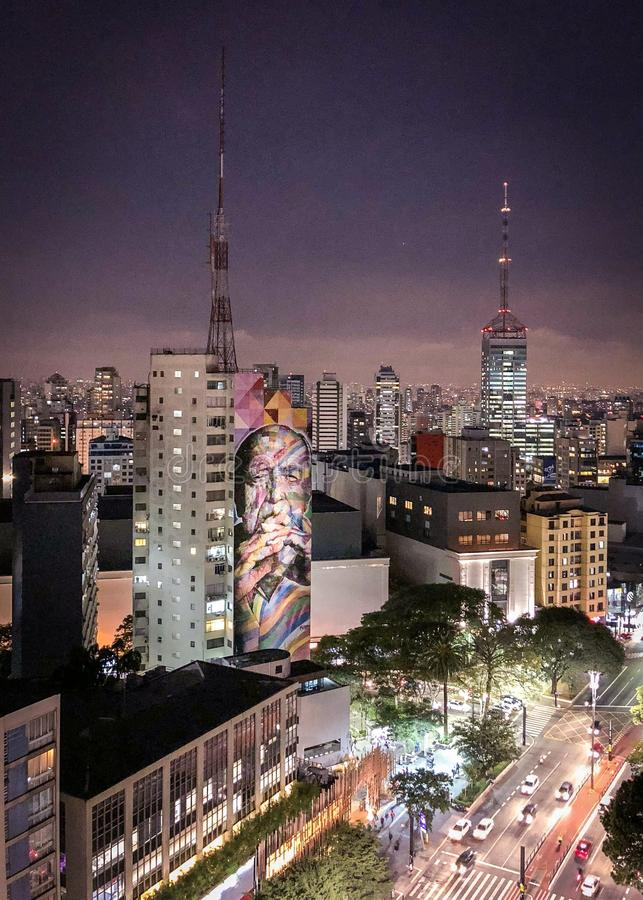 SAO PAULO - Grafitti i den Paulista avenyn Bilden av denberömda arkitekten Oscar Niemeyer som göras av målaren Kobra royaltyfri fotografi