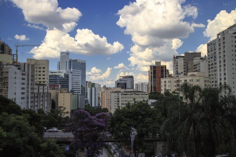 Sao Paulo Skyline Cityscape From Above royalty-vrije stock foto's