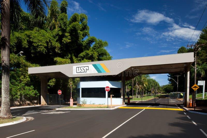 Sao Paulo University em Ribeirao Preto - Brasil Em julho de 2017 foto de stock royalty free