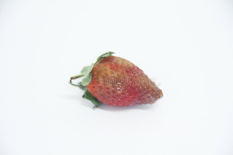 Sao saludable delicioso aislado agricultura Paulo Brazil de la fruta del molde de la comida de la fresa foto de archivo
