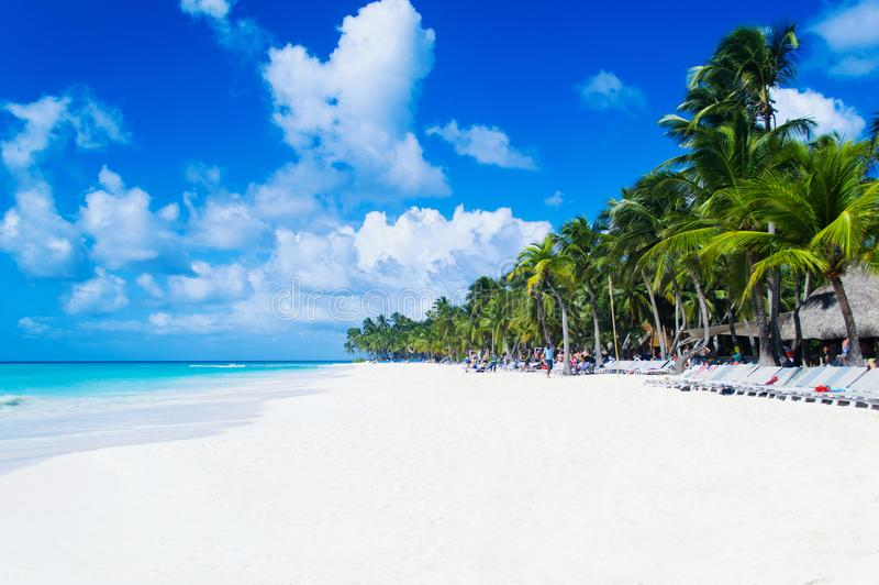 Clean beach with white sand near the azure Caribbean Sea. Tourists on the island Saona in sunny weather stock image