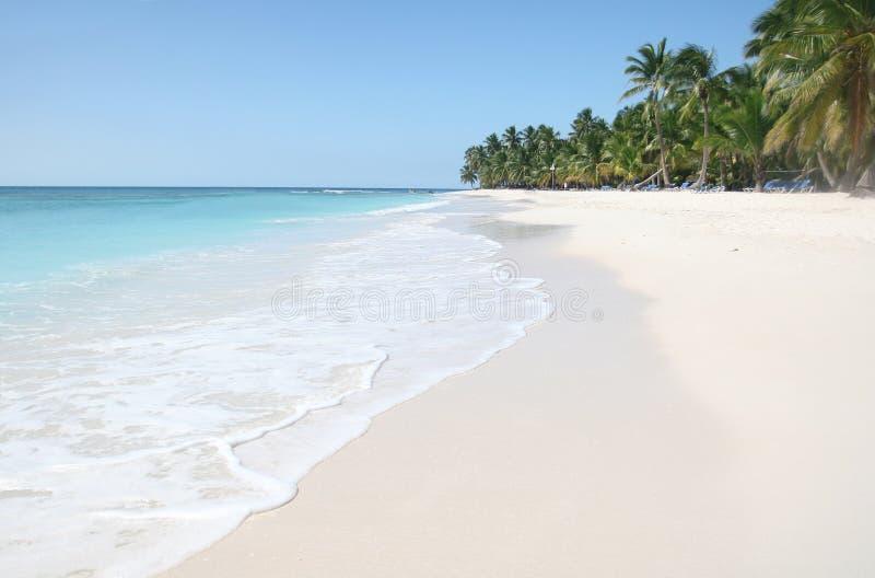 Saona: Het Strand van het zand, Caraïbische Oceaan en Palmen stock fotografie