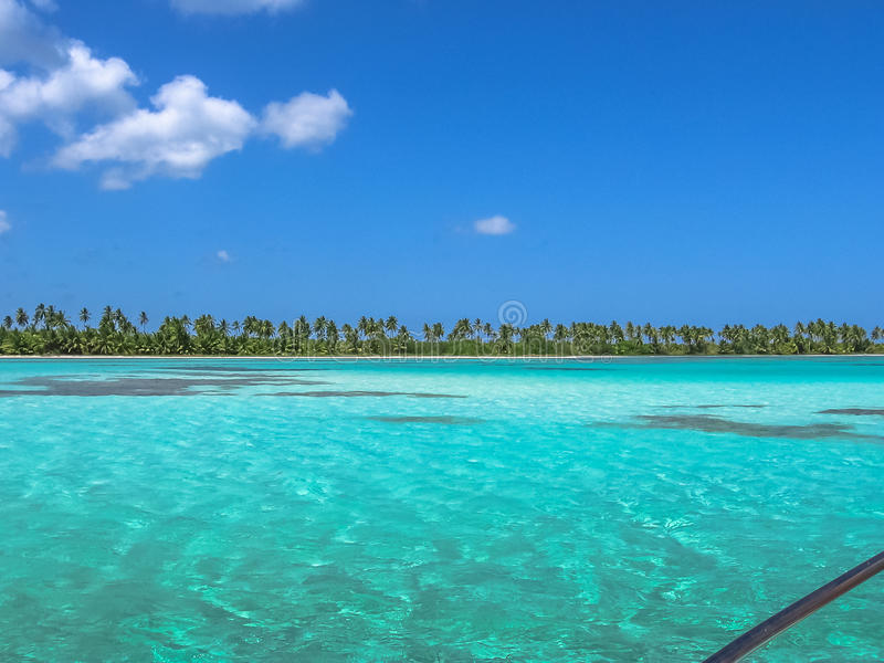 Saona-Insel-Dominikanische Republik lizenzfreie stockfotos