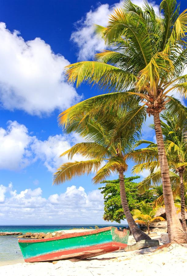 Saona island beach. Beautiful caribbean beach on Saona island, Dominican Republic stock image