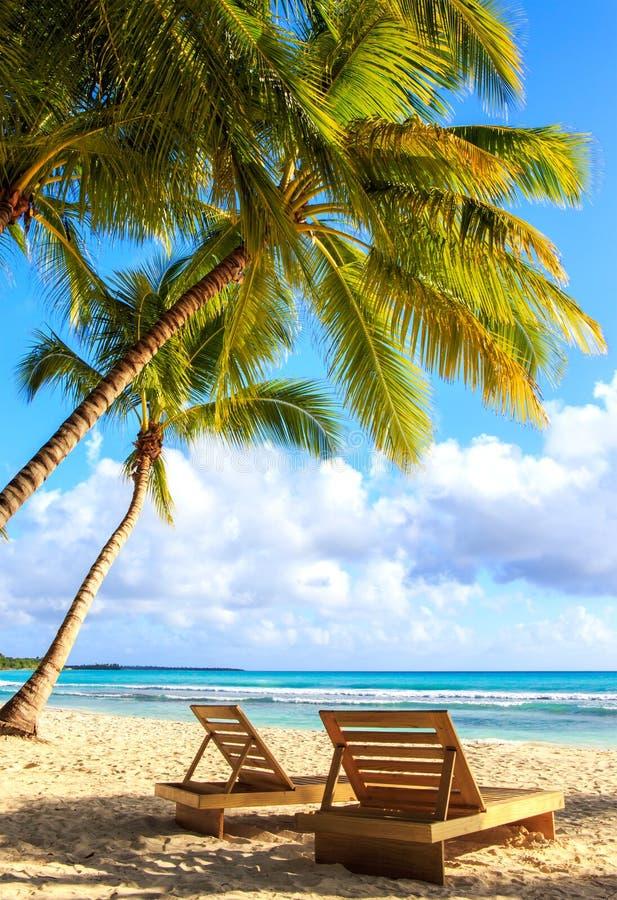 Saona island beach. Beautiful caribbean beach on Saona island, Dominican Republic stock images