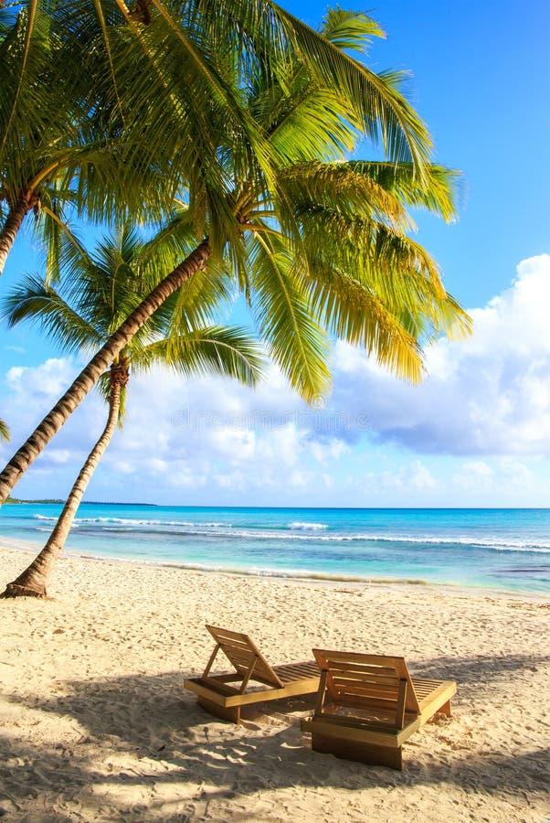 Saona island beach. Beautiful caribbean beach on Saona island, Dominican Republic stock photos