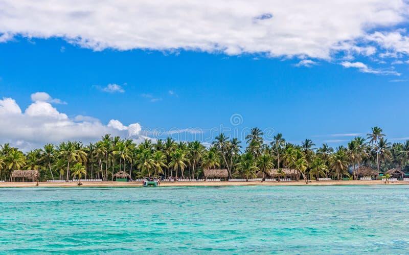 Saona island. In the Dominican Republic royalty free stock photo