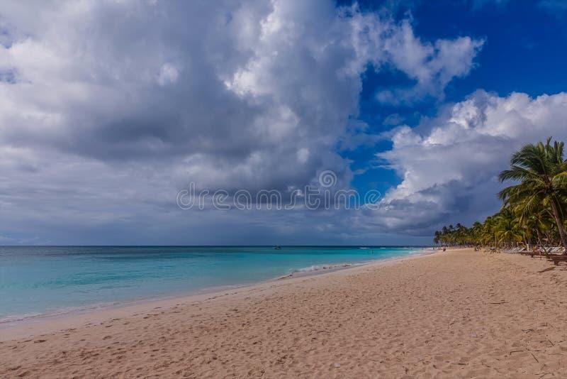 Saona island. In the Dominican Republic stock image