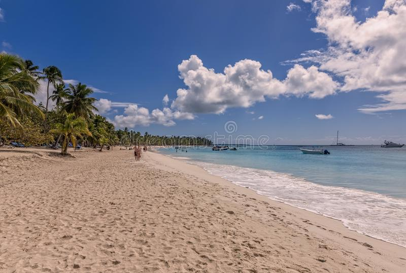 Saona island. In the Dominican Republic stock images
