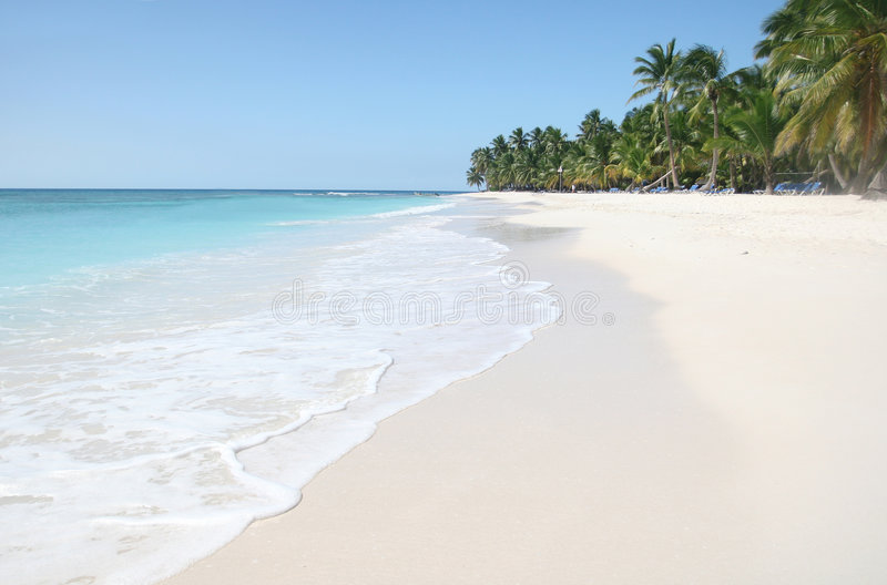 Saona: Spiaggia della sabbia, oceano caraibico e palme fotografia stock
