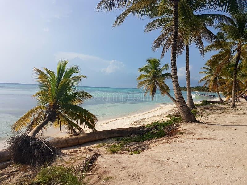 Saona tropical island relax sea sand  holiday. Tropicalisland stock photography