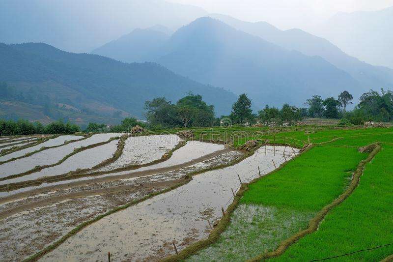 Sapa, Lao Cai, Vietnam stock image