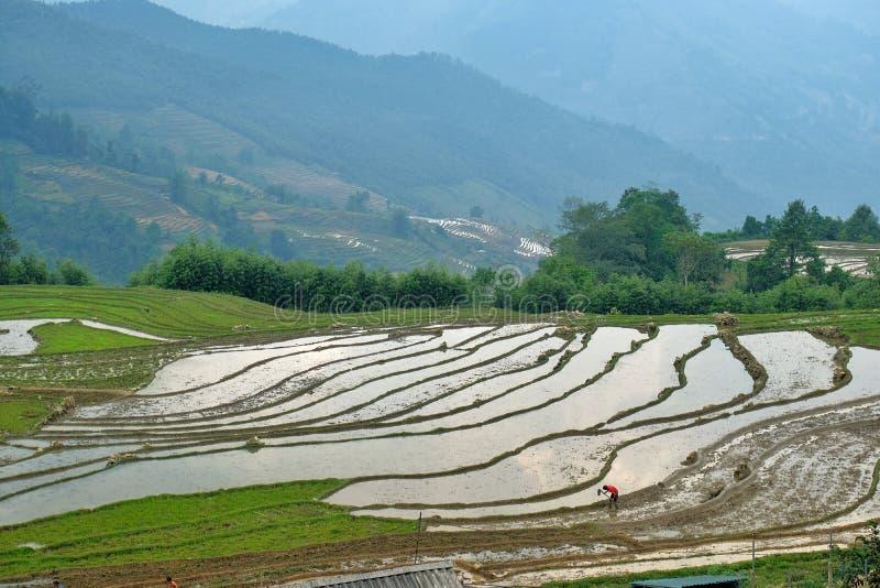 Sapa, Lao Cai, Vietnam stock fotografie