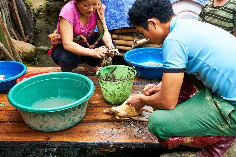 Sapa, Vietnam - 22 mai 2019 De plaatselijke bevolking bereidt kip voor diner in lao valey van chaisapa in Vietnam voor royalty-vrije stock afbeelding