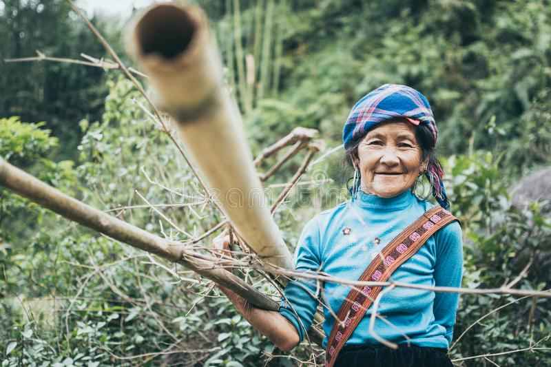 Sapa, Vietnam - May 2019: old woman from Hmong ethnic group in traditional dress carries woods in Lao Cai province. Carry, bamboo, firewood, brushwood, culture stock image