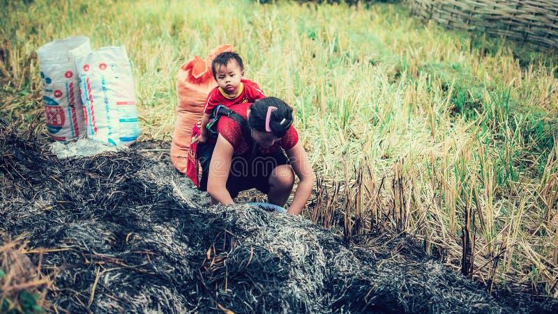 SAPA, Vietname - 10 de setembro de 2016: Uma mulher não identificada de Hmong que leva sua criança em seu portador de bebê em Vie imagem de stock royalty free