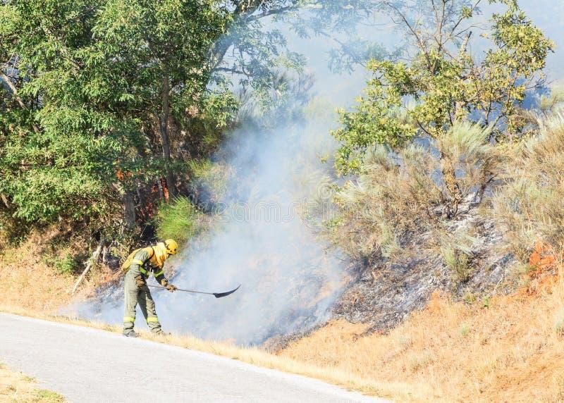 Sapador-bombeiro fotos de stock royalty free