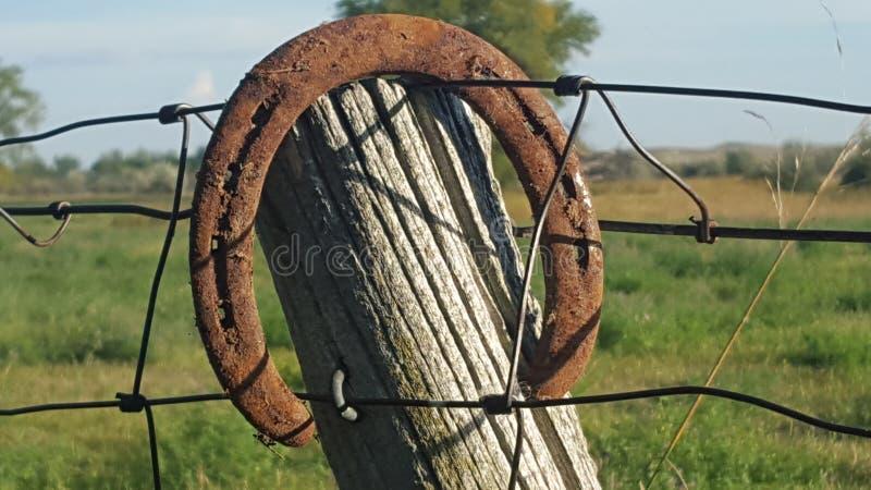 Download Sapata Afortunada Do Cavalo Foto de Stock - Imagem de cerca, sensação: 65578686