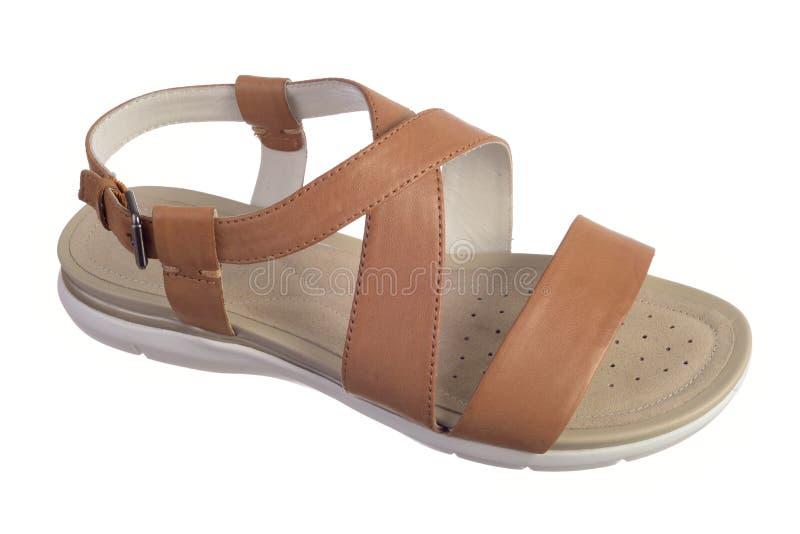 Sapata da sandália de Brown fotografia de stock royalty free