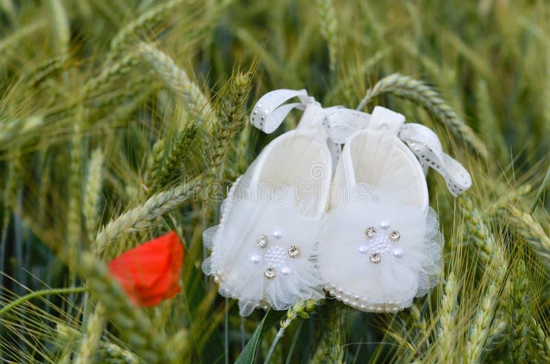 Sapatas brancas do beb? na terra verde do trigo fotografia de stock
