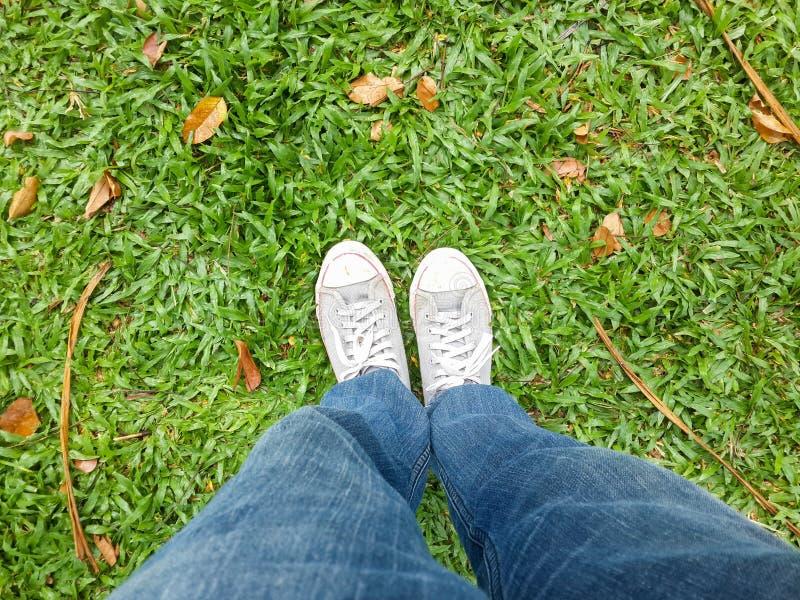 Sapatas brancas na grama verde imagens de stock royalty free